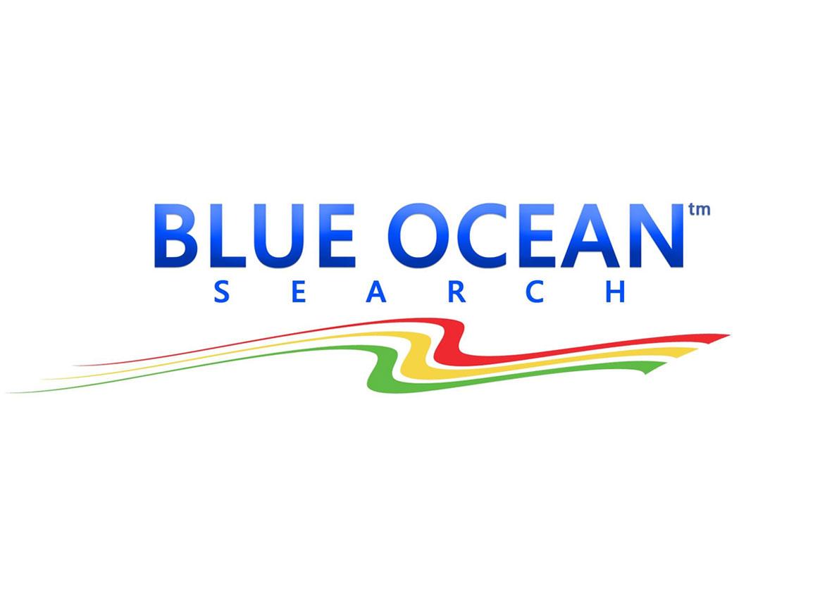 blueoceansearch.co.uk